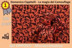Monocromatico1