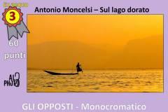 Monocromatico3