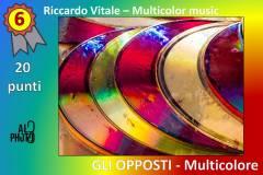 Multicolor6