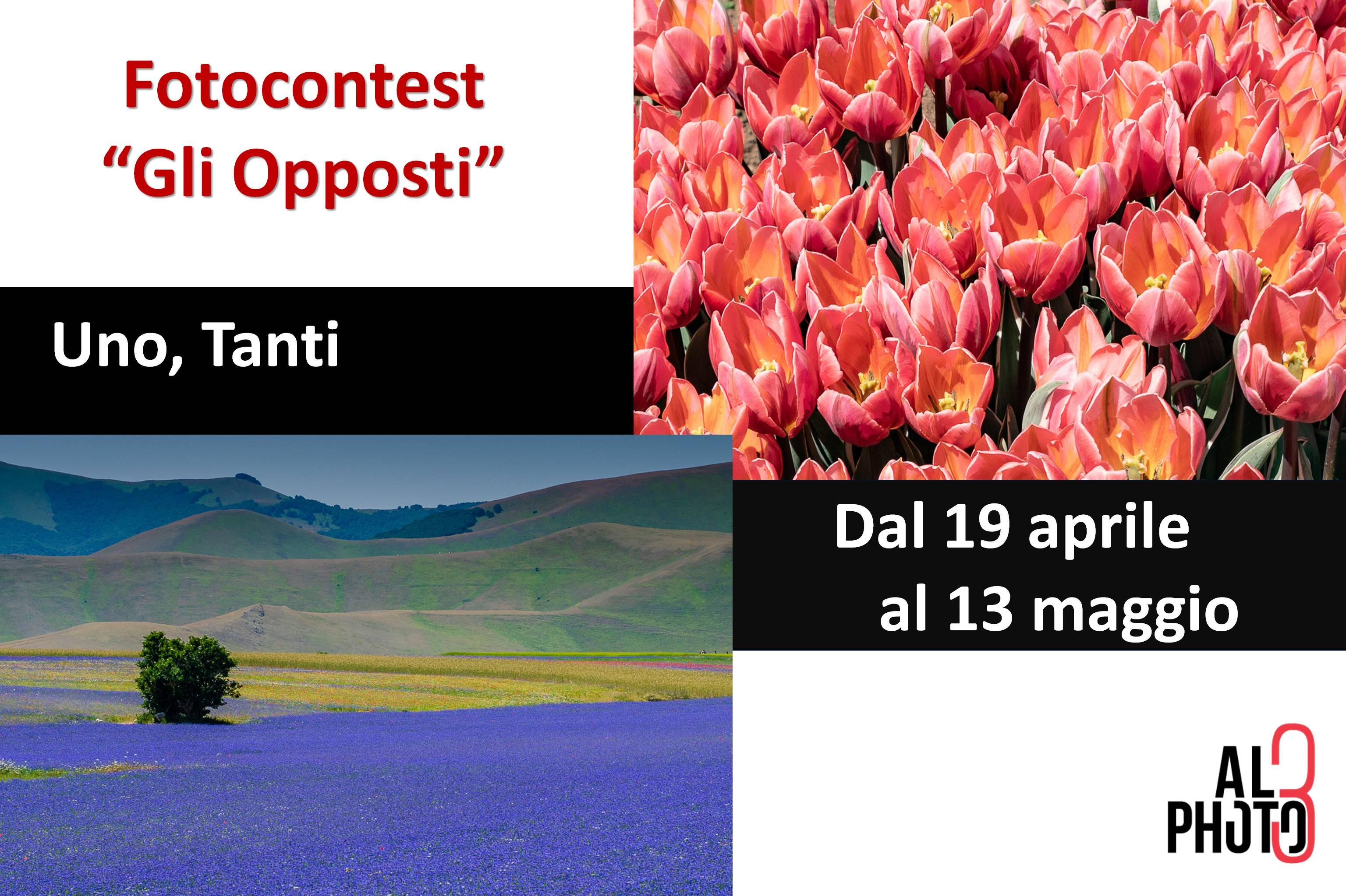 """Contest """"Gli Opposti"""" – prova 7 e 8"""